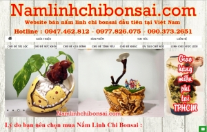 namlinhchibonsai.com