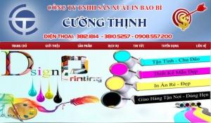 baobicuongthinh.com