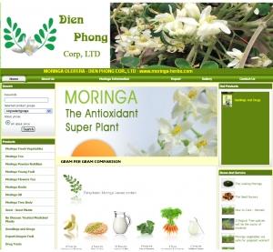 Thiết kế website moringa-vn.com