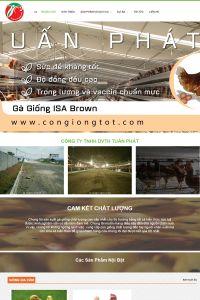congiongtot.com