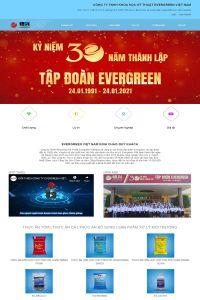 evergreenvietnam.com